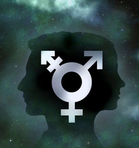 Back to back male and female profiles with transgender symbol_398038