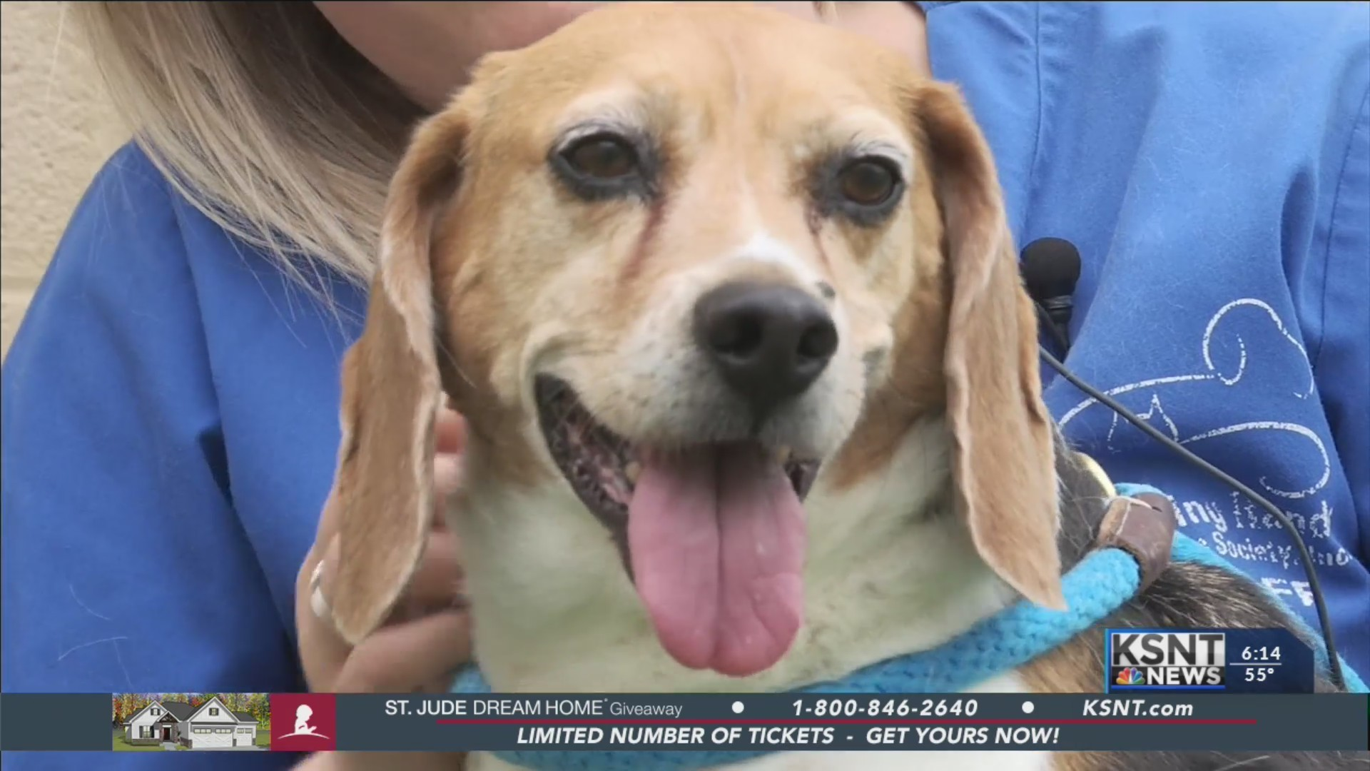 Adopt-A-Pet: May 30, 2019
