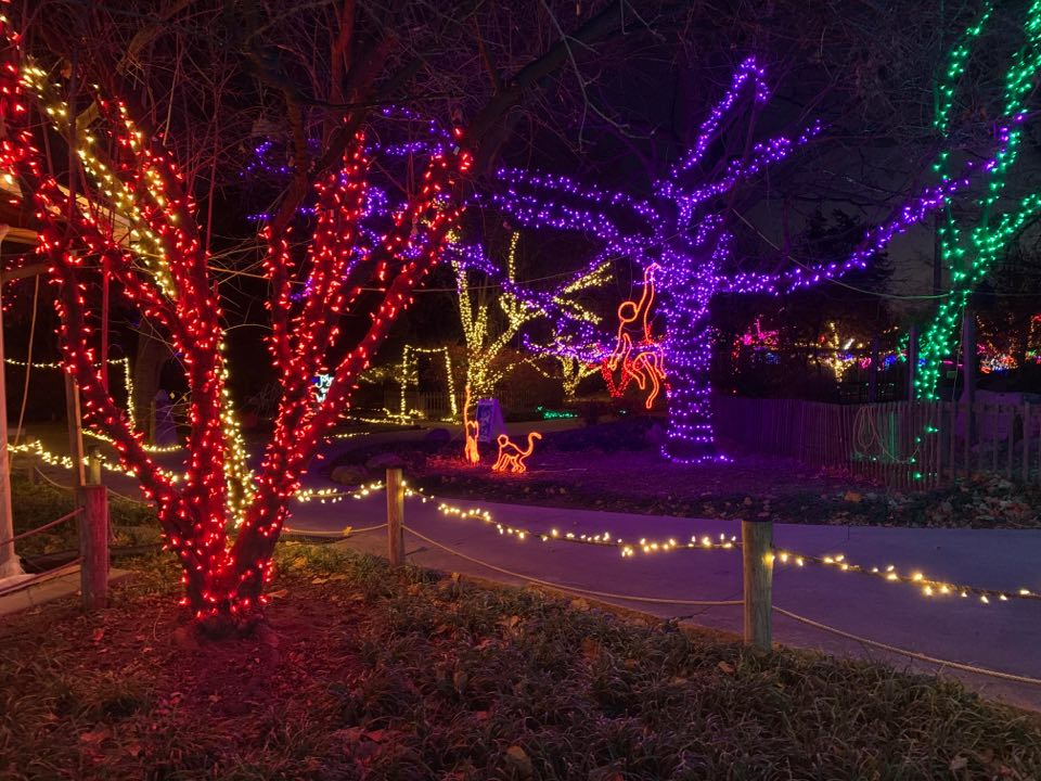 SNEAK PEEK: Topeka Zoo testing 'Zoo Lights' ahead of Black Friday opening