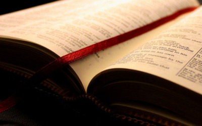 How Much do You Read your Bible?