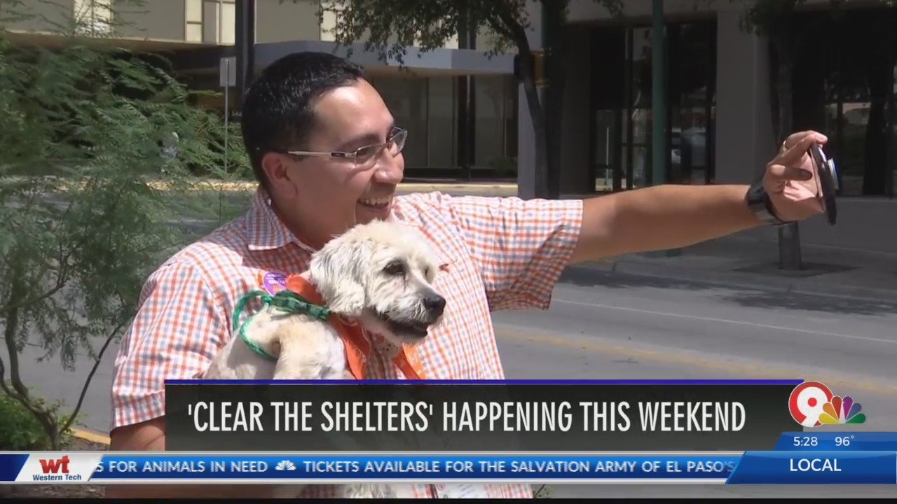 City staff takes selfies with shelter pets