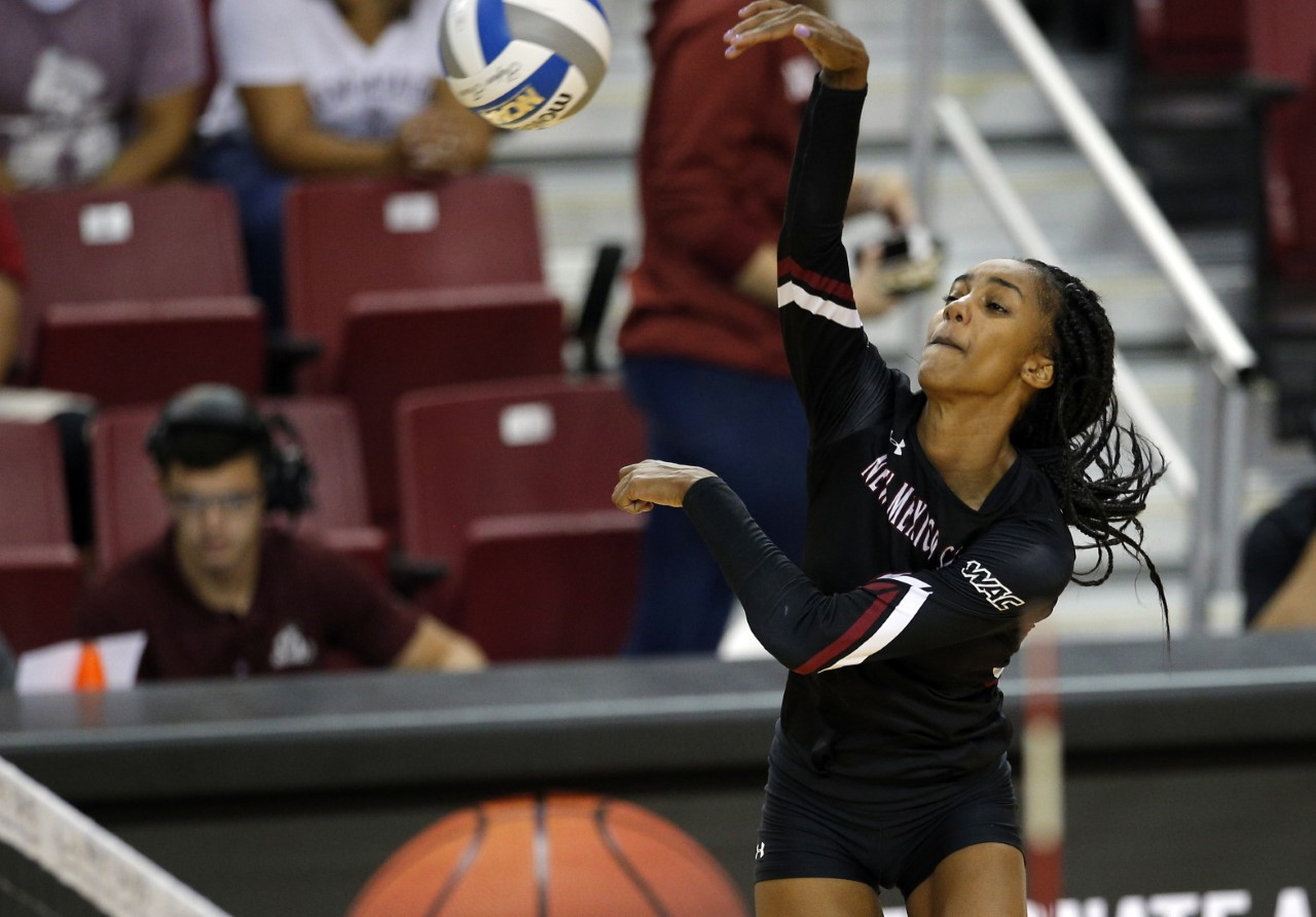 NMSUvb_1542865854761.png
