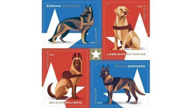 Dog Stamps_1549634002536.jpg_71722948_ver1.0_640_360_1549669909394.jpg.jpg