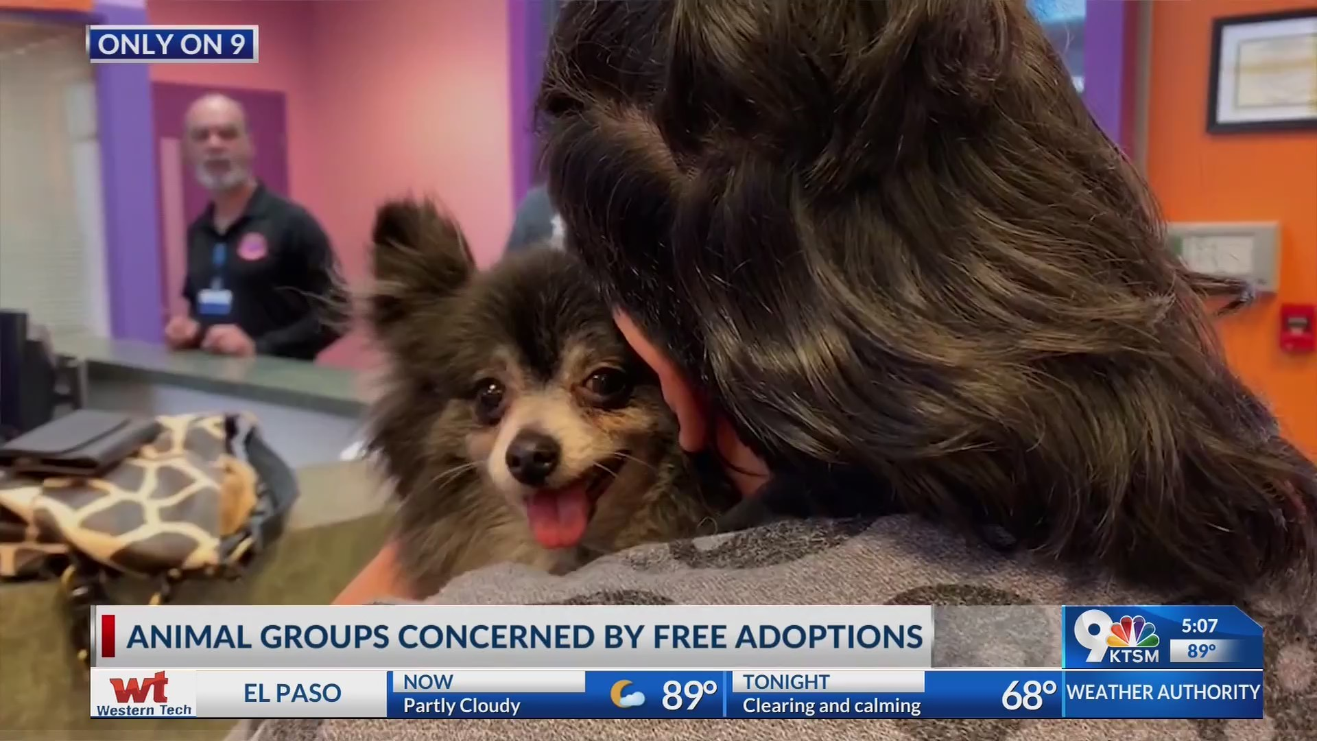El Paso animal shelters face overcrowding; some blame free adoptions