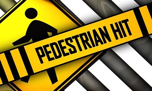 Pedestrian from Dawn struck on Livingston County Road 424