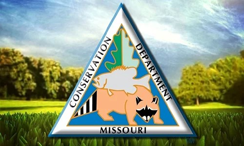 Missouri Department of Conservation reports 3 new cases of CWD from mandatory sampling