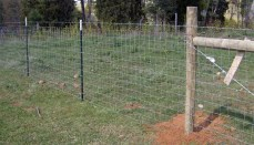 Fence on Farm