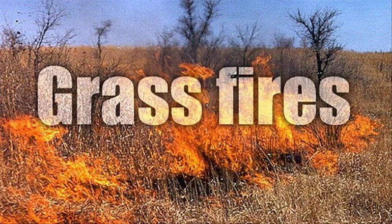 Grass fire burns 40 acres northeast of Trenton