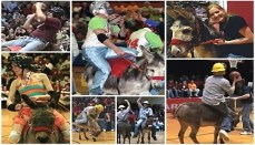 Dairyland Donkey Basketball