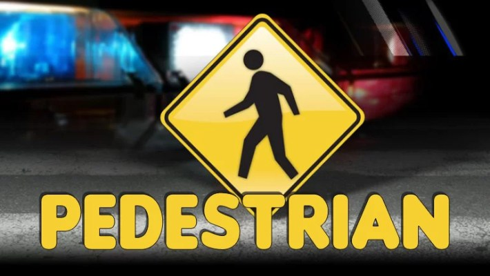 Pedestrian sign and police lights