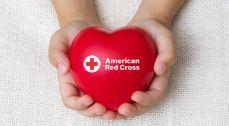 Hands holding Red Cross heart (website)