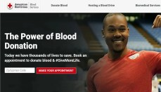 Red Cross Website