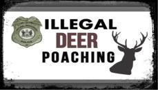 Illegal Deer Poaching