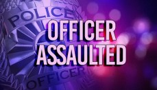 Police Officer Assaulted