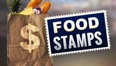Food Stamp or SNAP Graphic