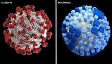 Coronavirus Versus Flu