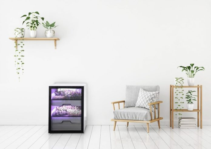 The Plantcube not only looks stylish, it also allows you to grow lettuce and herbs in your own kitchen - regardless of the season.  (Photo: Agrilution)