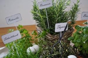 Kräuterpfannkuchen – Es grünt so grün