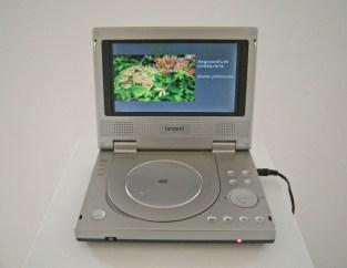 The Garden, Artifex Semper Beatus Est, Slide Show with Sound, 2008