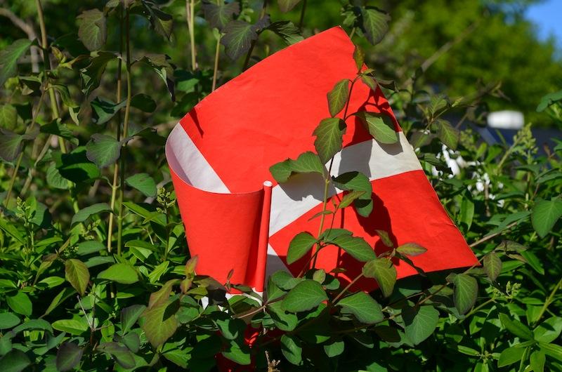 Danska-zastava