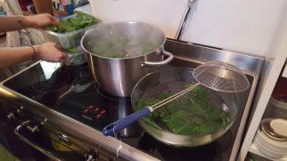 On lance la cuisson des épinards