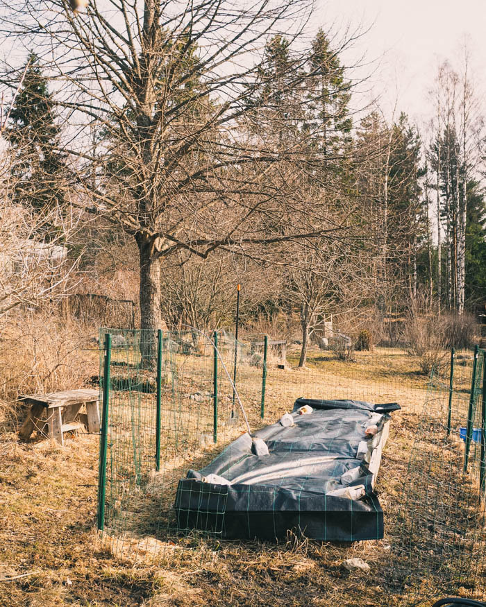 Puutarhan kevättyöt | puutarha | keittiöpuutarha | pihanhoito