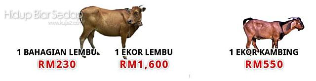 harga lembu qurban