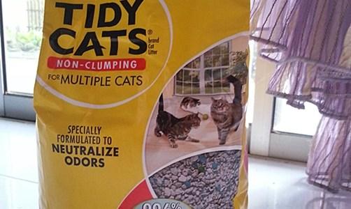 pasir kucing tidy cats