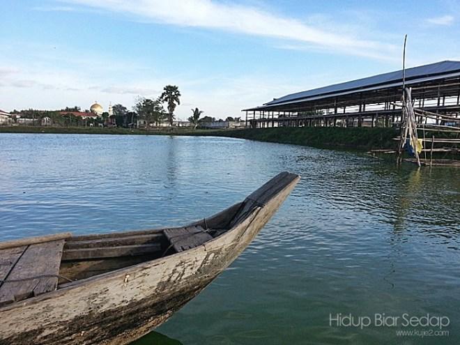 kolam ikan toman CMC