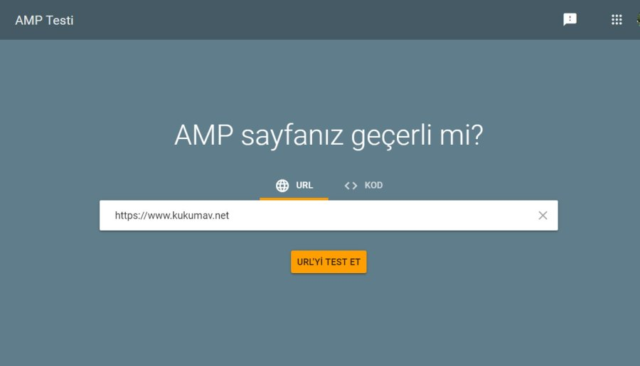 Google AMP testi