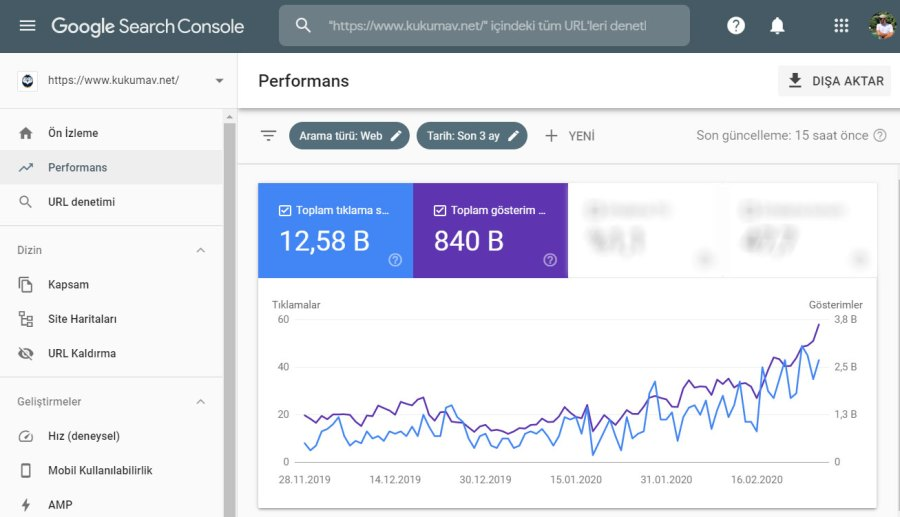 Search Console Performans