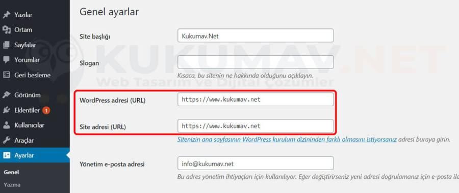 Wordpress Tercih Edilen Alan Adı