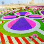 Dubai-Miracle-Garden-jardin-flores