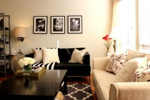 pequeña-sala-de-estar-decoracion-flores-espacio-reducido