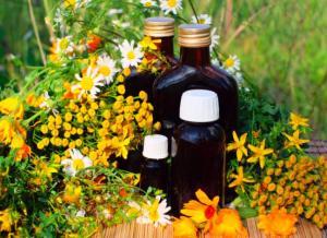 flores-medicinales-manzanilla-plantas