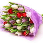 ramo-de-tulipanes-rojo-lila-blanco
