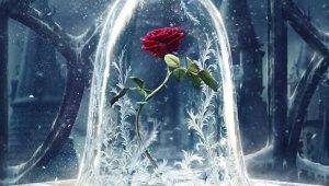 Créditos: Película La Bella y la Bestia, de DISNEY, 6 películas en la que las flores fueron protagonistas