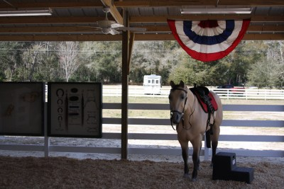 florida-christian-retreat-and-conference-center-rodeo-7-sm