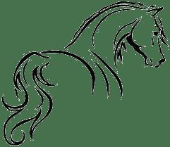 horseback riding in Florida at Kulaqua Retreat and Conference CenterHorseback Riding and Equestrian Programs