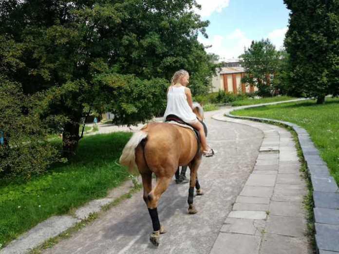 У Львові відбувся благодійний сімейний фестиваль
