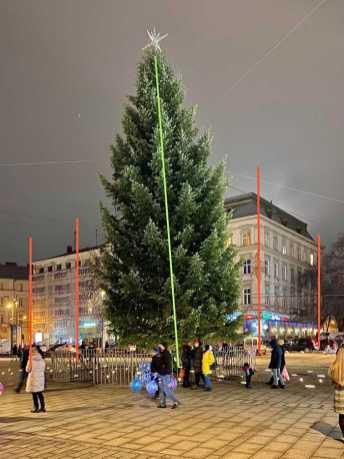 У Львові просять вирівняти головну ялинку міста, фото із спільноти Гаряча лінія міста Львова