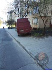 У Львові бус скотився у дерево, фото Варта-1