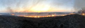 На Львівщині ліквідували 121 пожежу сухої трави, фото ДСНС Львівщини