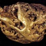 Eevert Kiviniemen hippu Luton latvoilta on tilastoiduista kultahipuista painavin. Kuva GT/ Pekka Virtanen.