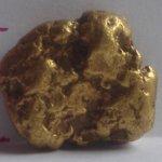 Tämä Kalevi Tiilikaisen Hangasojalta 1998 löytämä Siiri lienee painavim metallinetsimellä löydetty Lapin kultahippu.
