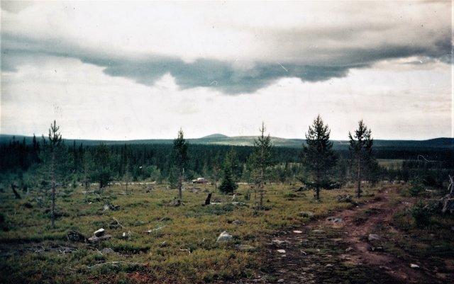 Salla Tuntsan erämaata; keskellä yli 600 m korkean Sauoivan huippu. Tieuraa pitkin pääsin pikku Toyotalla peräkärryn kanssa ihan kultakurun reunalle. Kuva Jorma Korpela.