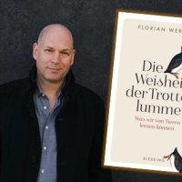 Rezension zu Florian Werners »Die Weisheit der Trottellumme - Was wir von Tieren lernen können«