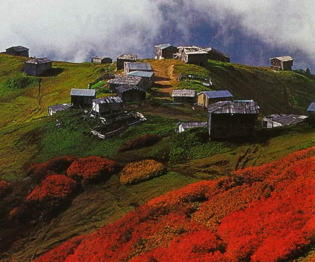 crnomorski-planinski-predel