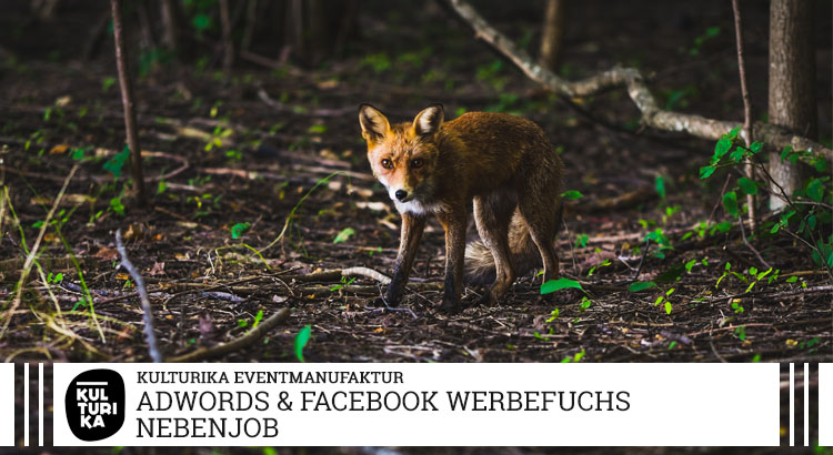 Adwords Facebook Instagram Werbung Online Marketing Manager Job Köln