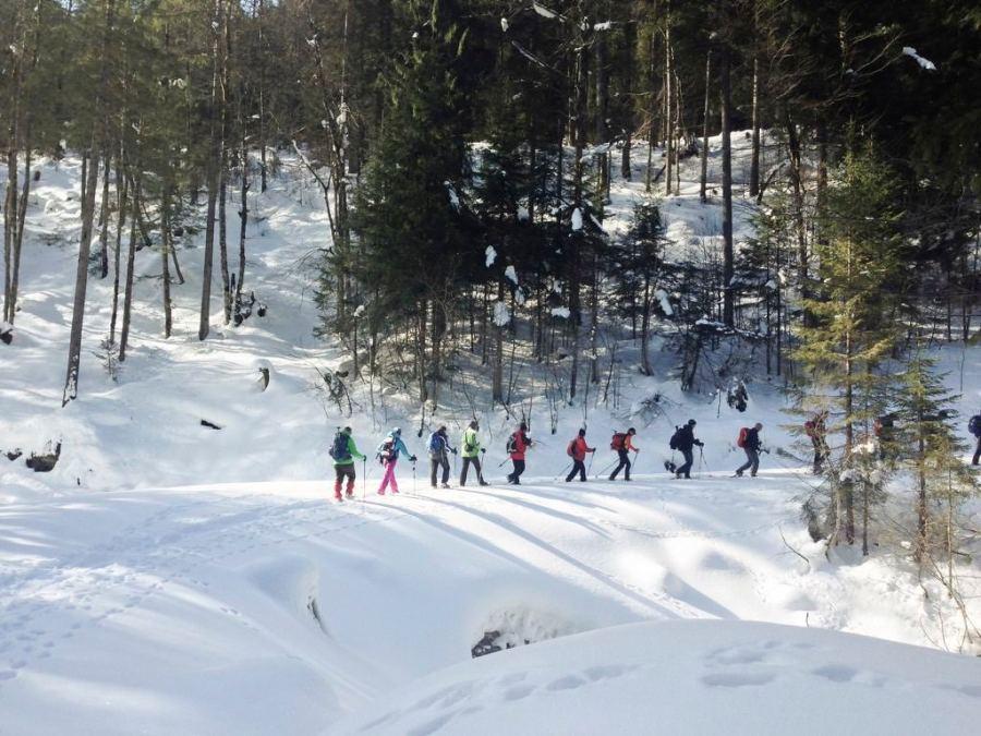 Tipp-Tapp im Gänsemarsch durchs Lattengebirge